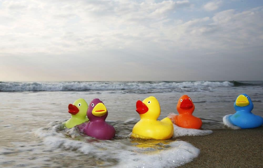 A rubber duck race is a fun and creative way to decide your draft order