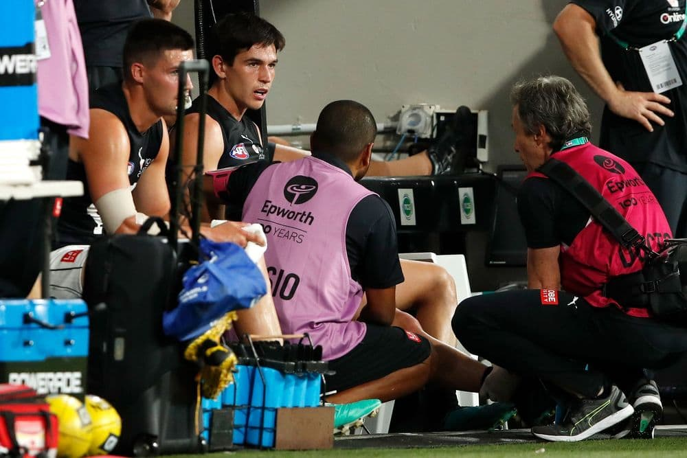 Zac Fisher and Nic Newman on the sidelines. Picture: AFL Photos