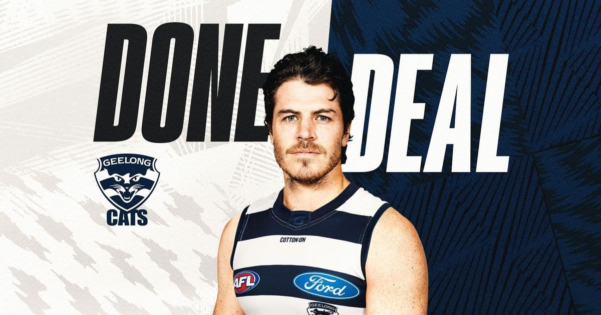 Veteran wingman joins Cats Hawks score third-round pick – AFL